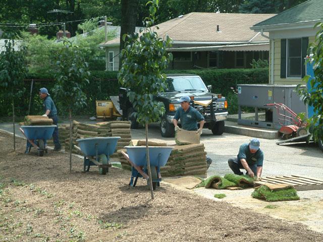 Landscaping Design Services